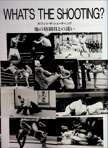 tigermask12